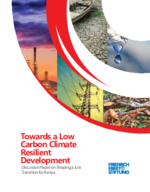 Towards a low carbon climate resilient development